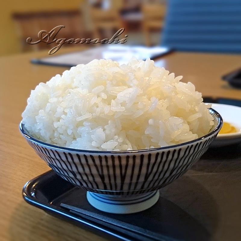 toyama_gohan.jpg