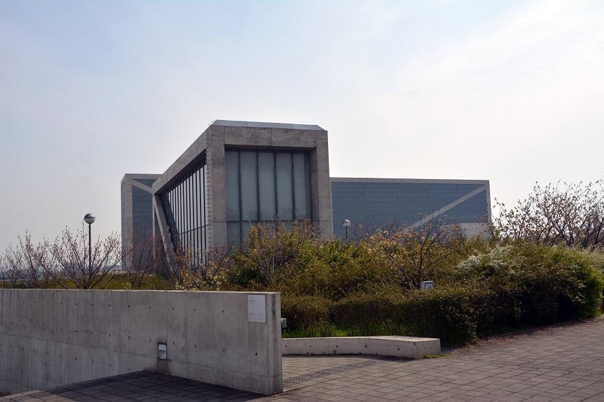 ラバーダック・狭山池 (13)