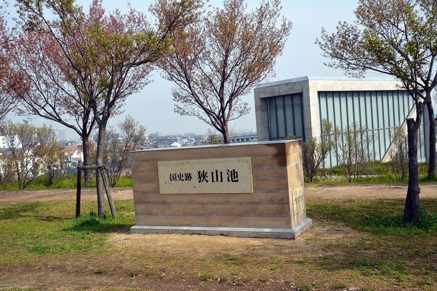 ラバーダック・狭山池 (14)