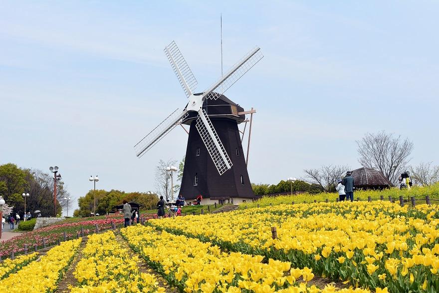 鶴見緑地の風車 (1)