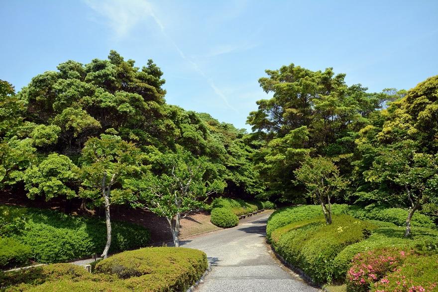 日本庭園 (5)