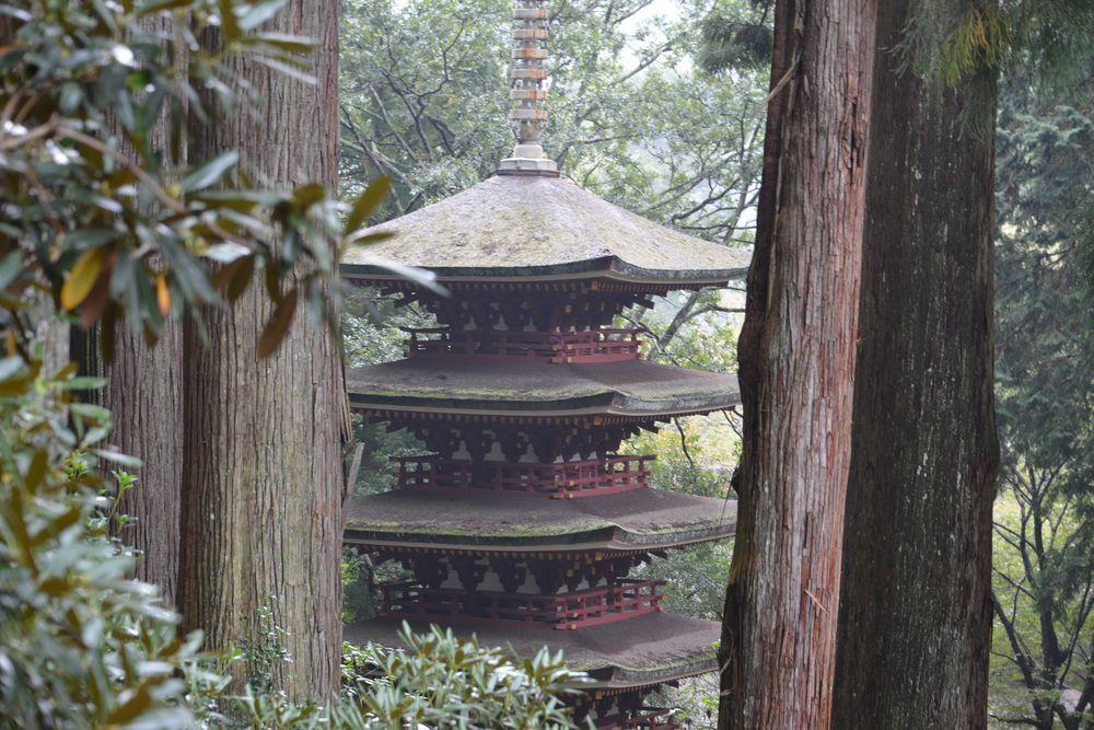 室生寺五重塔-4