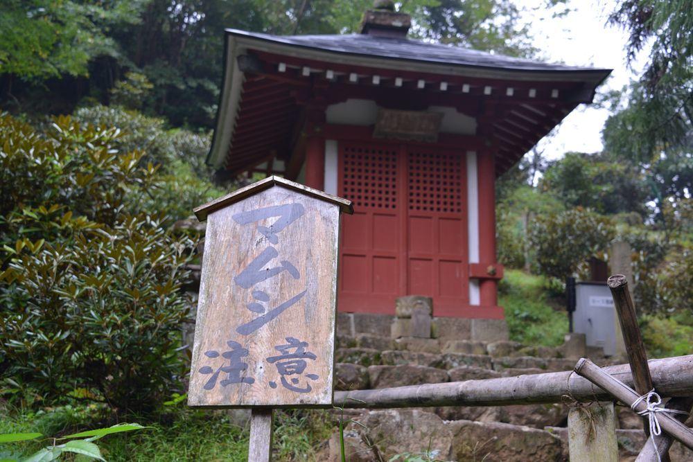 室生寺五重塔-7