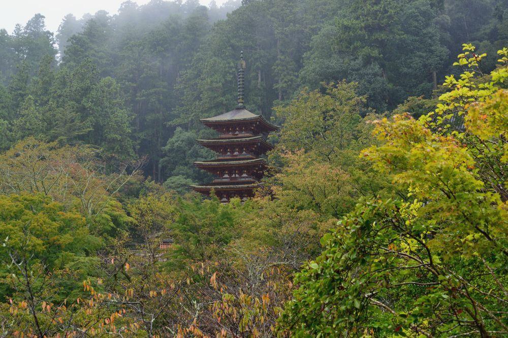長谷寺五重塔-0