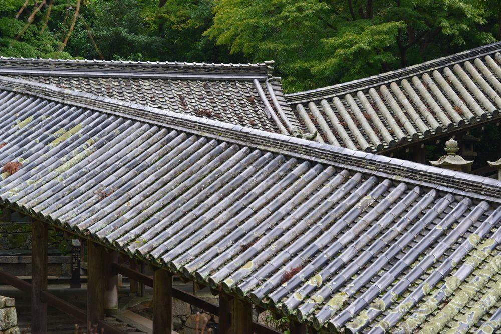 長谷寺下山-5