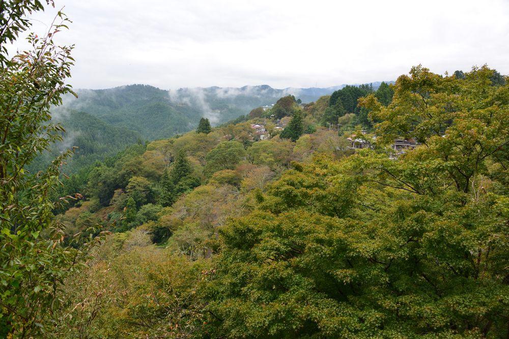 吉野山-1