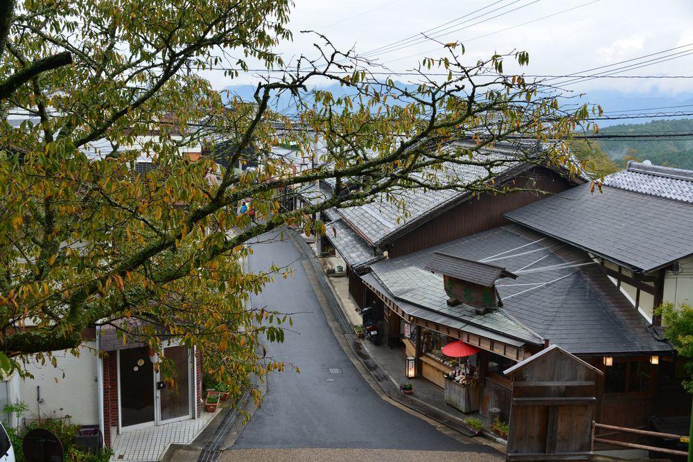 吉野山-4