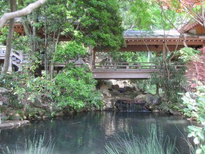 深大寺五大尊池