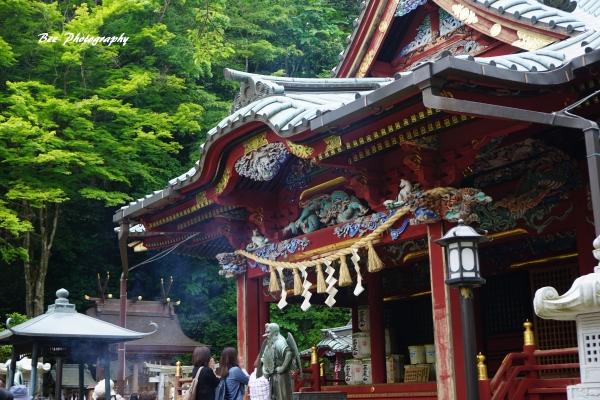 bee-高尾山8370