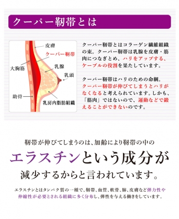 lunaクーパー靭帯
