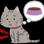 ネコ(空腹