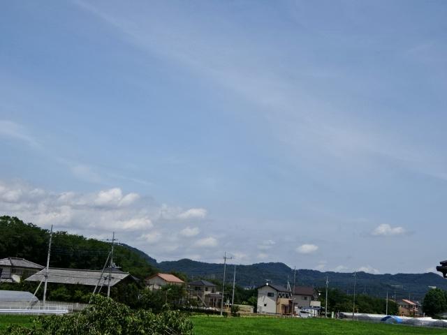 DSC08923.jpg