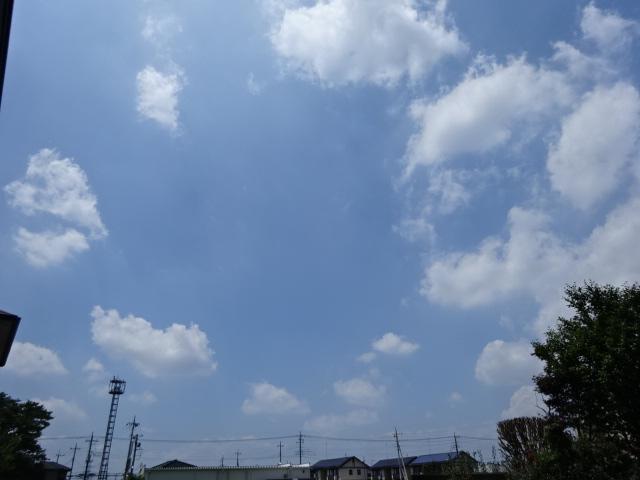 DSC09321.jpg