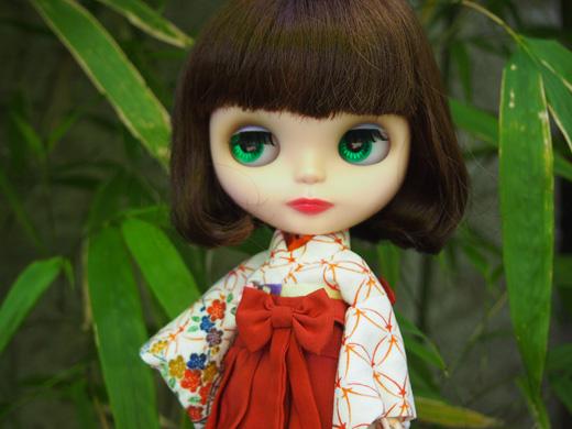 kimonoimage.jpg