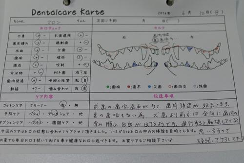 DSC_2009_R.jpg