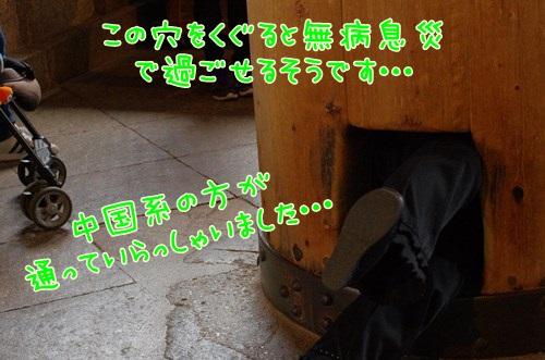 RK52G4024_Y.jpg