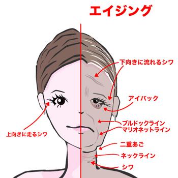 face201002.jpg