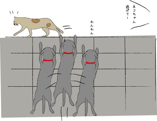 ネコとラブラドール