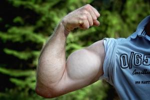 muscles-811479_960_720.jpg