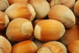 nuts-1012904_960_720.jpg