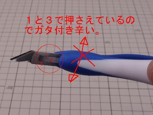 IMGP4464.jpg