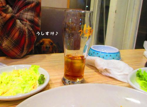 2016-2-daiba124.jpg