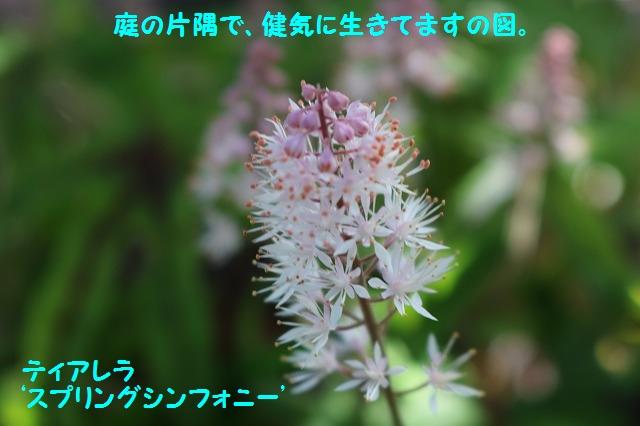 IMG_1804.jpg