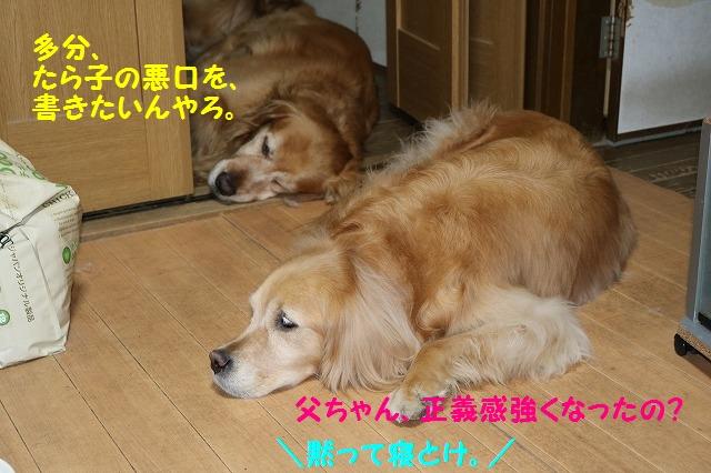 IMG_3117.jpg
