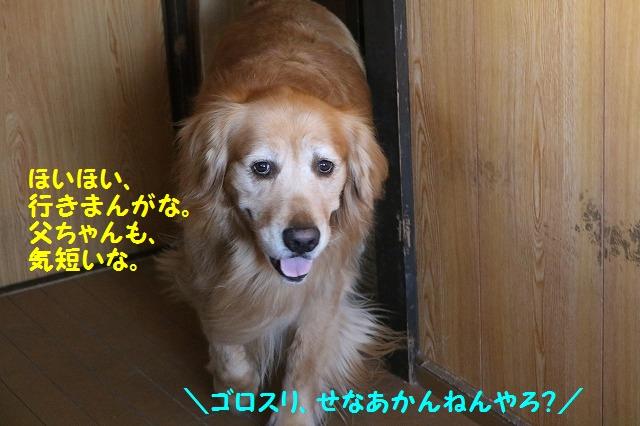 IMG_4575.jpg