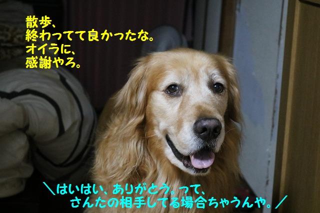 IMG_5075.jpg