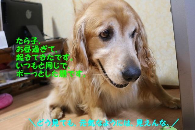 IMG_5942.jpg