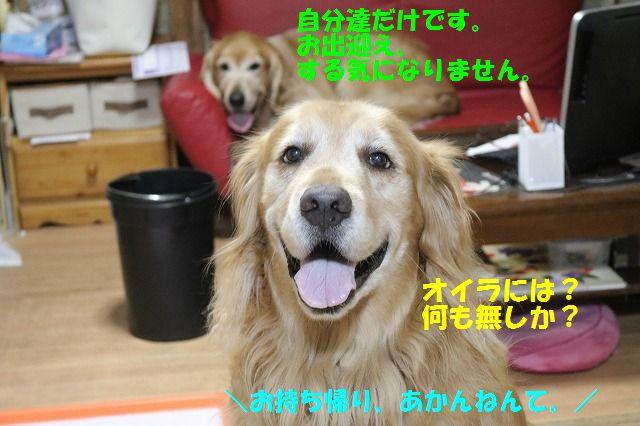 IMG_6634.jpg
