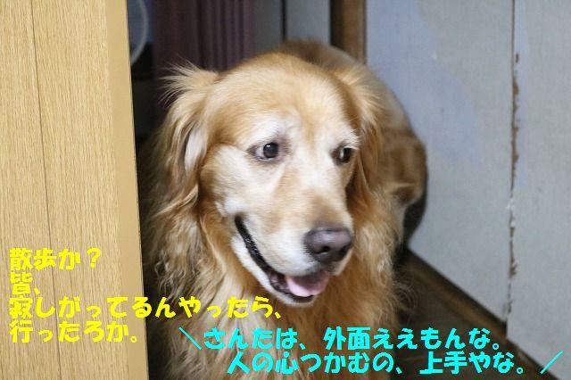 IMG_7326.jpg