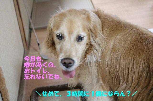 IMG_8818.jpg