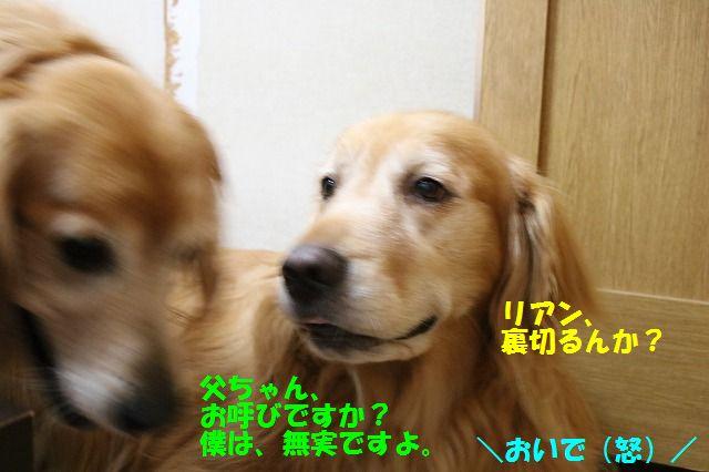 IMG_8943.jpg