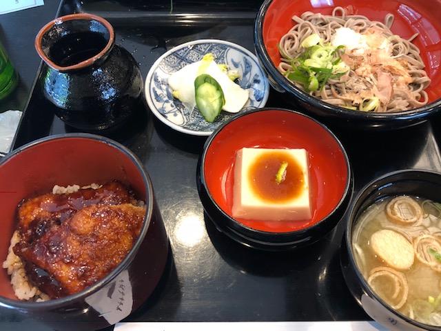 fukui99.png