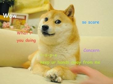Doge_first.jpg