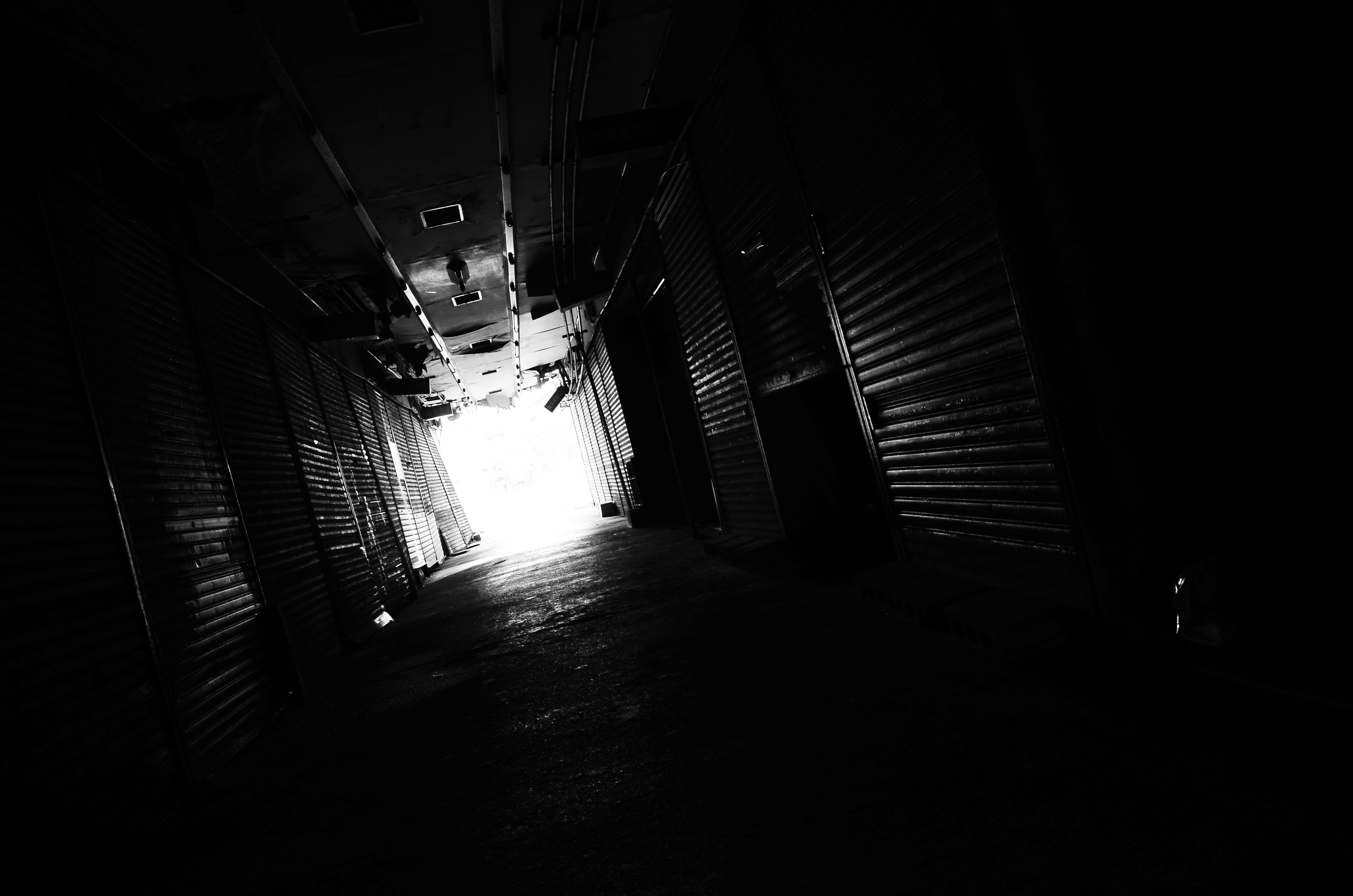 DSC_7745.jpg