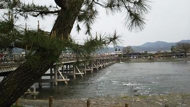嵐山410 (5)