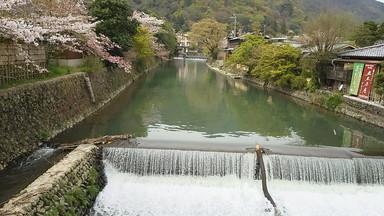 嵐山410 (3)