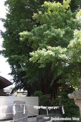 姥神神社(仙台市宮城野区銀杏町)1