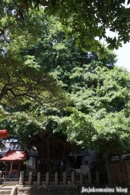 姥神神社(仙台市宮城野区銀杏町)9