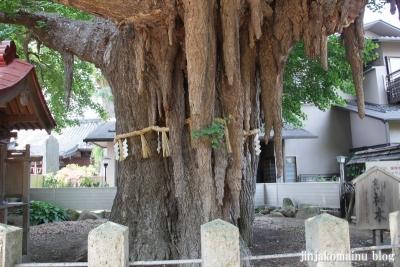 姥神神社(仙台市宮城野区銀杏町)7