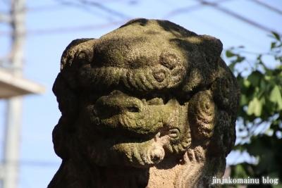 大和町八幡神社(中野区大和町)26