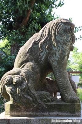 大和町八幡神社(中野区大和町)7