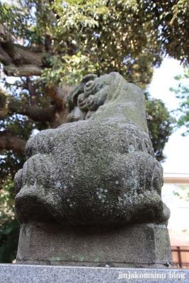 大和町八幡神社(中野区大和町)19