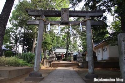 豊玉氷川神社(練馬区豊玉南)3