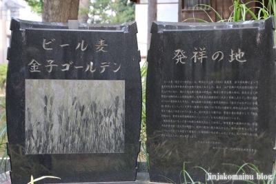 豊玉氷川神社(練馬区豊玉南)5