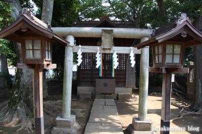 豊玉氷川神社(練馬区豊玉南)22