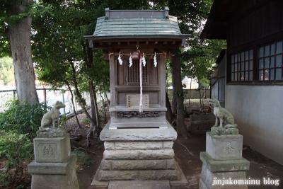 豊玉氷川神社(練馬区豊玉南)25